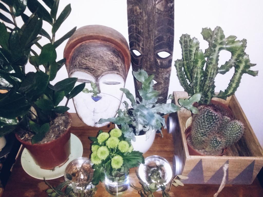 Masken und Pflanzen in Malus Lieblingsecke in ihrer Wohnung