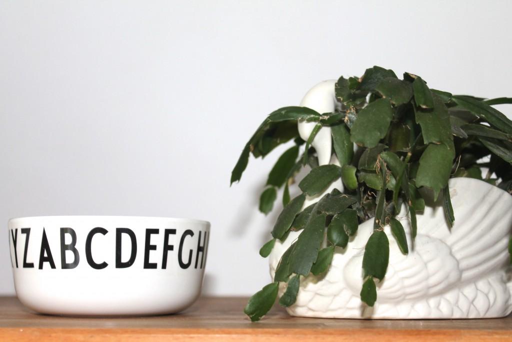 design letters bowl